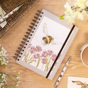 Notebooks & Jotters